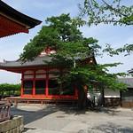 Carmina Japo?n, Kyoto 09