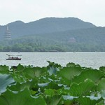 Hangzhou 16