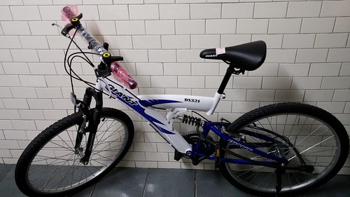 CAM00240 | 捷安特DS321前後避震車 26吋越野登山自行車 | 李 寧 | Flickr