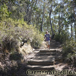 Viajefilos en Australia. Blue Mountains 064