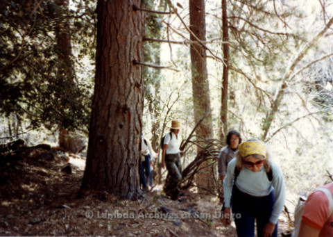 P008.019m.r.t Mt. Palomar 1983: Mary Russell, Ann Ramsey, and other hikers heading to Asher's cabin