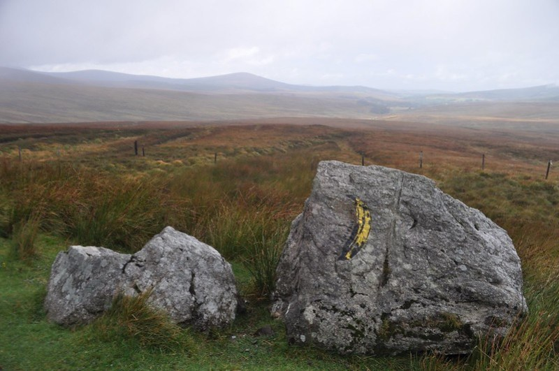 Hmm, Banana Rock Art, Wicklow Mountains