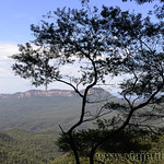 Viajefilos en Australia. Blue Mountains 014