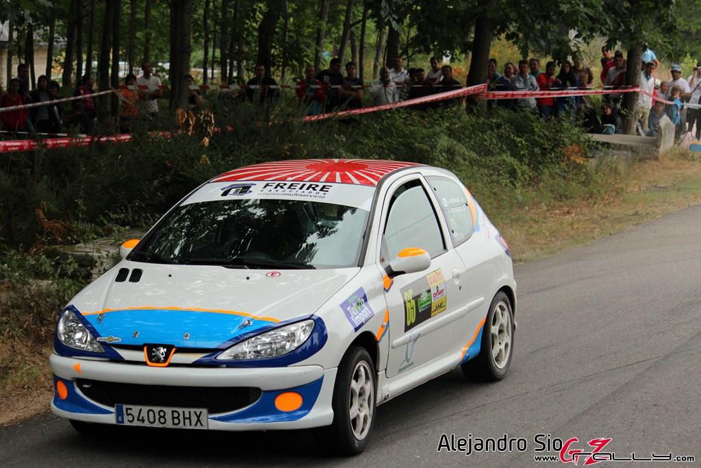 x_rally_sur_do_condado_156_20150307_1753934109