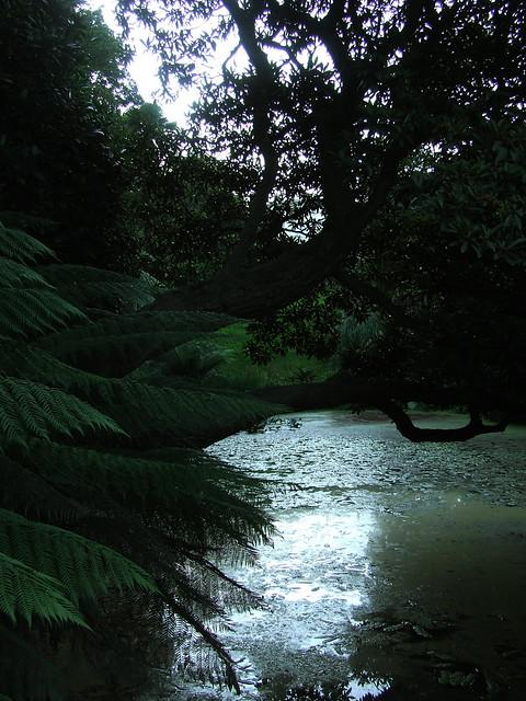 Lost Gardens at dusk