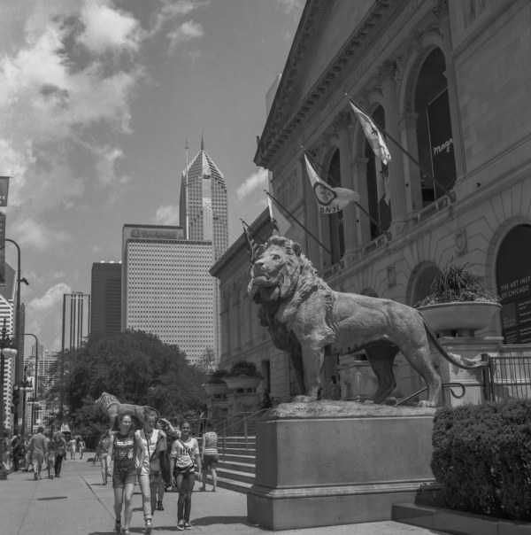Art Institute Of Chicago Lions Flank Entrance