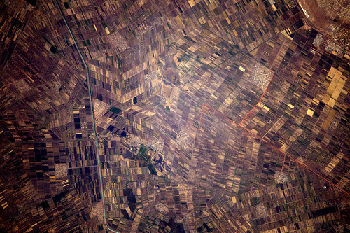 Tightly-packed agriculture