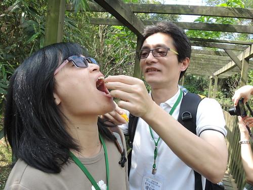 1031101興福寮親子遊 (86) | Tree House教育機構 | Flickr