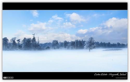 A Winter Mist in Carton