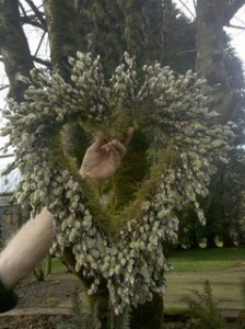 Pussy Willow Heart Wreath