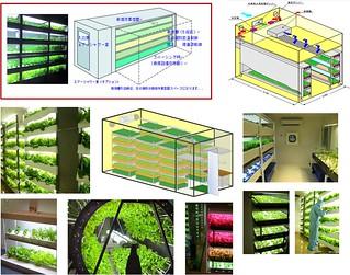 Flickr: The 植物工廠 Plant Factory - 植物栽培技術 Pool