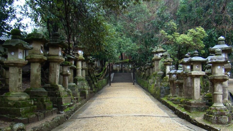 Parque del Ciervo linternas de piedra Nara Gran Santuario Kasuga Japon 07