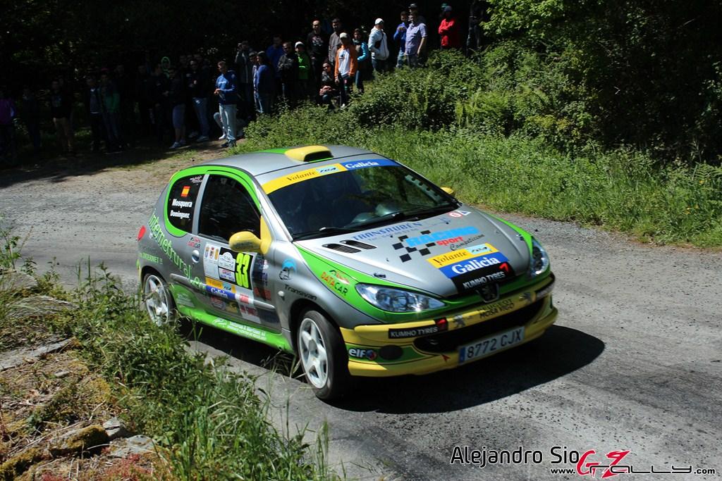 vi_rally_comarca_da_ulloa_102_20150307_1345179869