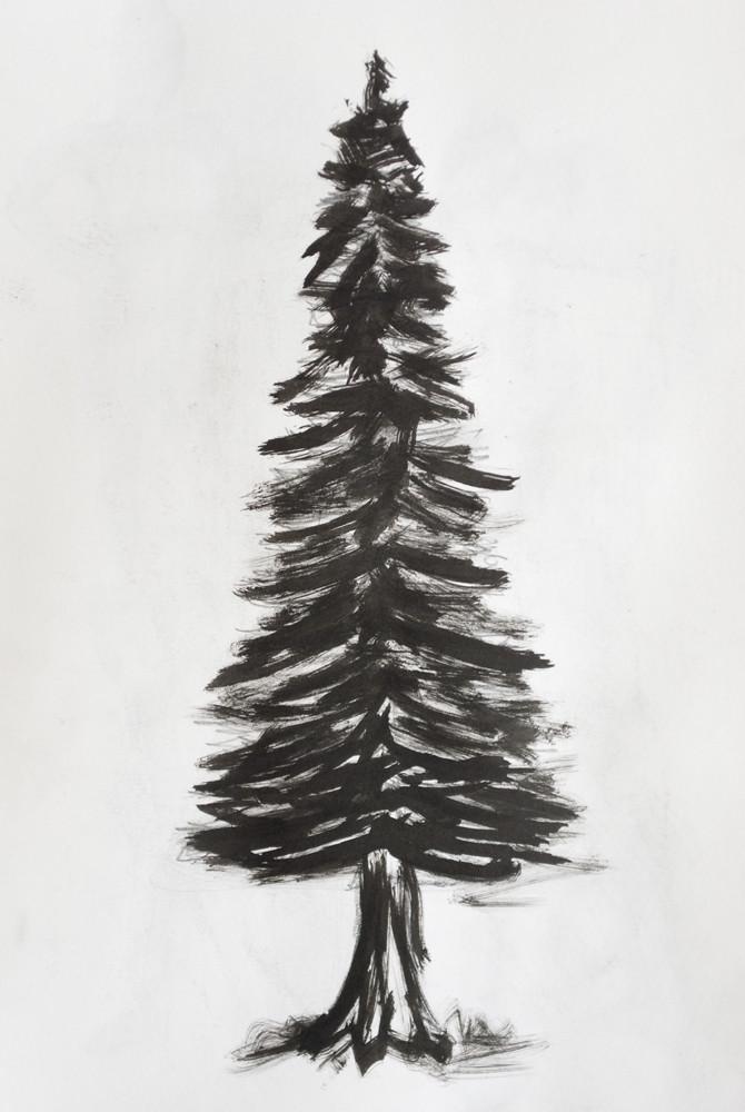 pine tree simple pine