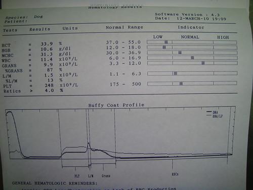 2010/3/12 Celia的血液生化檢查報告   2010/3/12 Celia的血液生化檢查報告   Flickr