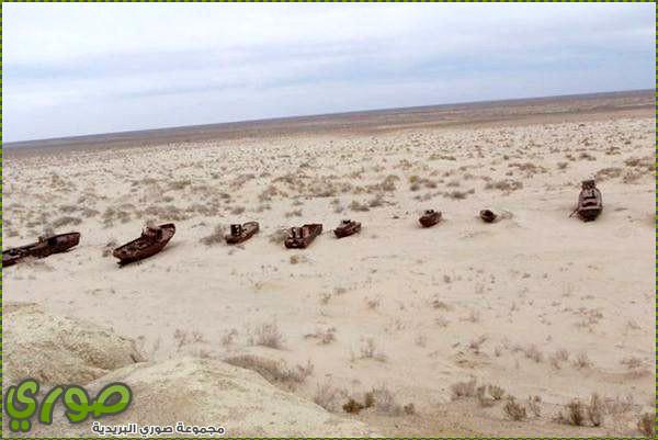 الم تعلم ان الله على كل شئ قدير صور تحول بحر الى صحراء
