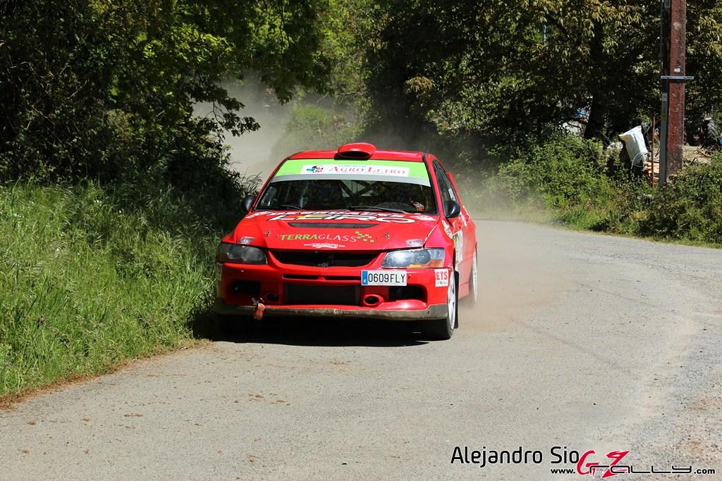 vi_rally_comarca_da_ulloa_239_20150307_1043386393