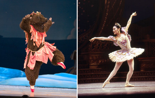 Stacy Shiori Minagawa as a Bear and The Sugar Plum Fairy