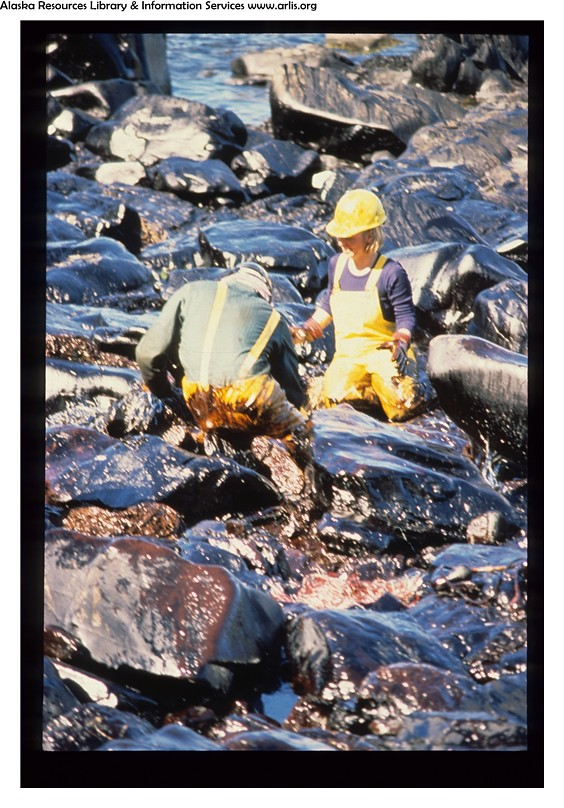 Exxon Valdez Oil Spill  0726  Beach cleanup workers in