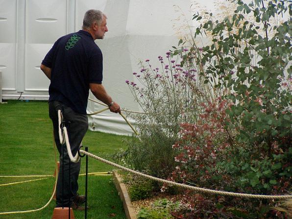 Dry garden 2xxx