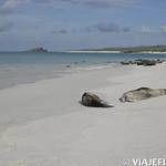 Viajefilos en La Espanola, Galapagos 077