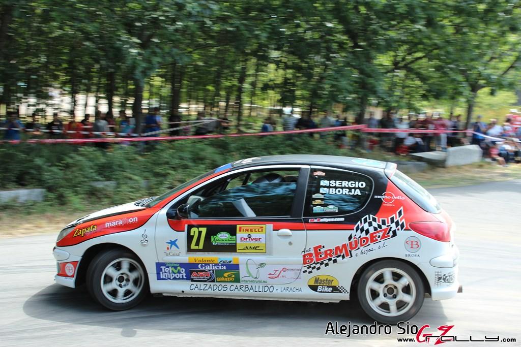 x_rally_sur_do_condado_43_20150307_1476800435