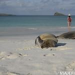 Viajefilos en La Espanola, Galapagos 092