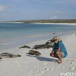 Viajefilos en La Espanola, Galapagos 082