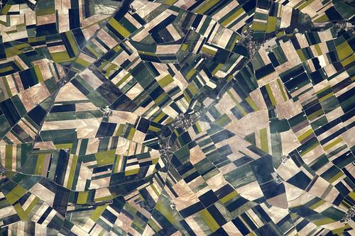 Fields in Aube
