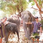 Chiang Mai VM (6)