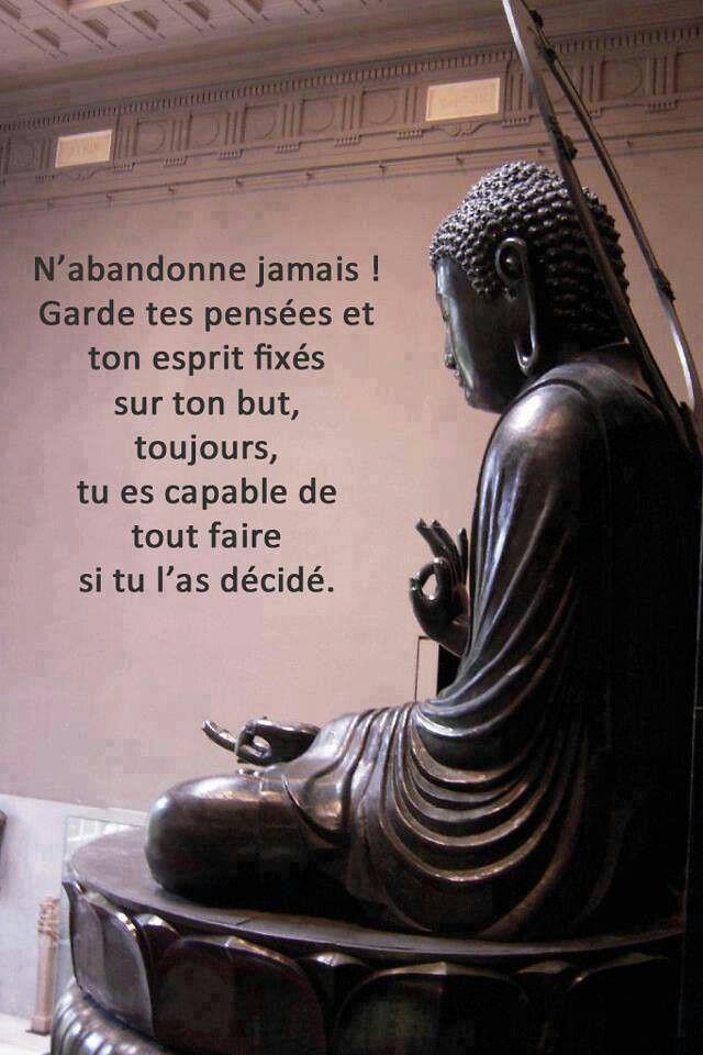 Citation Philosophique Sur La Vie : citation, philosophique, Citations, Réussite, Succes:, Philosophie..., Https://citati…, Flickr