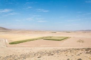 Was wel een dingetje natuurlijk om in die tijd (500 v. Christus) in deze woestijn een tuin te bouwen en te irrigeren.