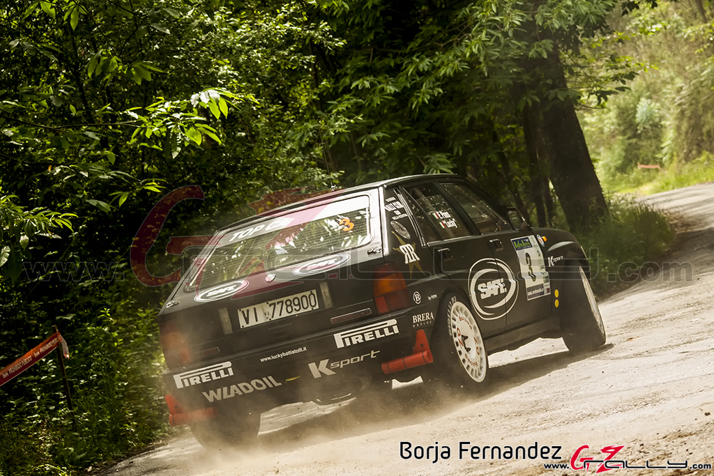 Rally_AsturiasHistorico_BorjaFernandez_17_0004