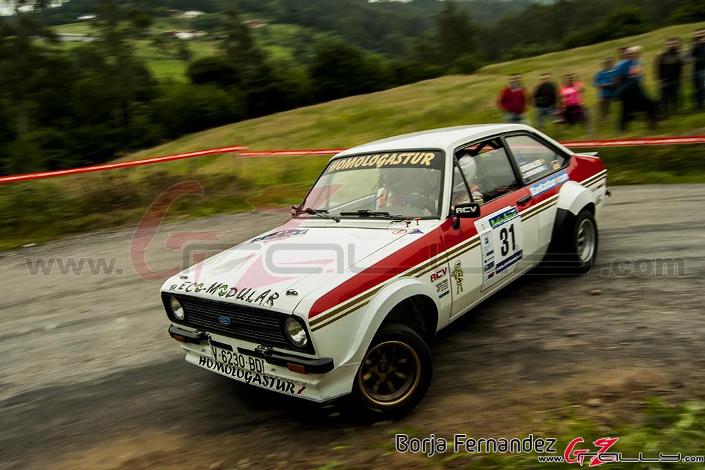 Rally_AsturiasHistorico_BorjaFernandez_17_0005