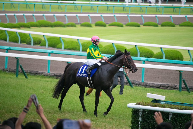 Satono Crown - 58th Takarazuka Kinen - Hanshin Racecourse