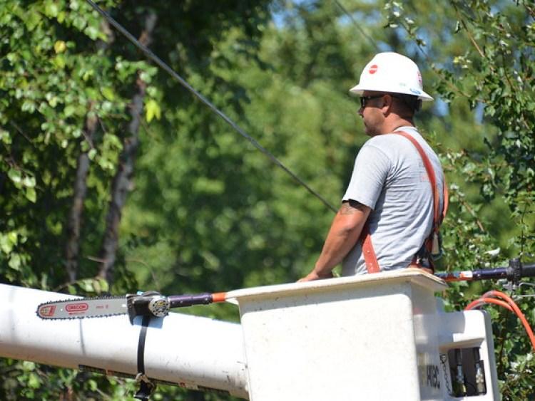 Tree Cutters jclure at asplundh_4397