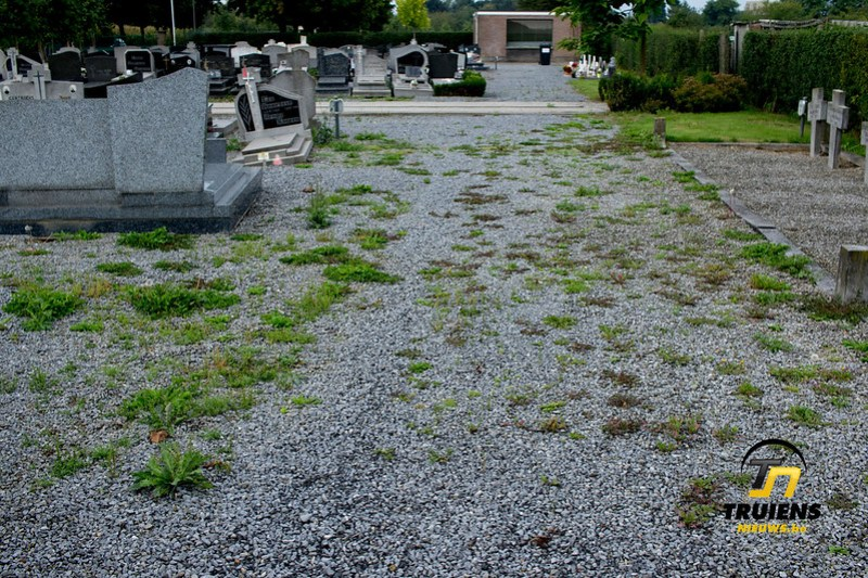 kerkhof (5)