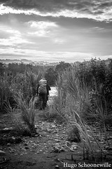Backpacking in the jungle