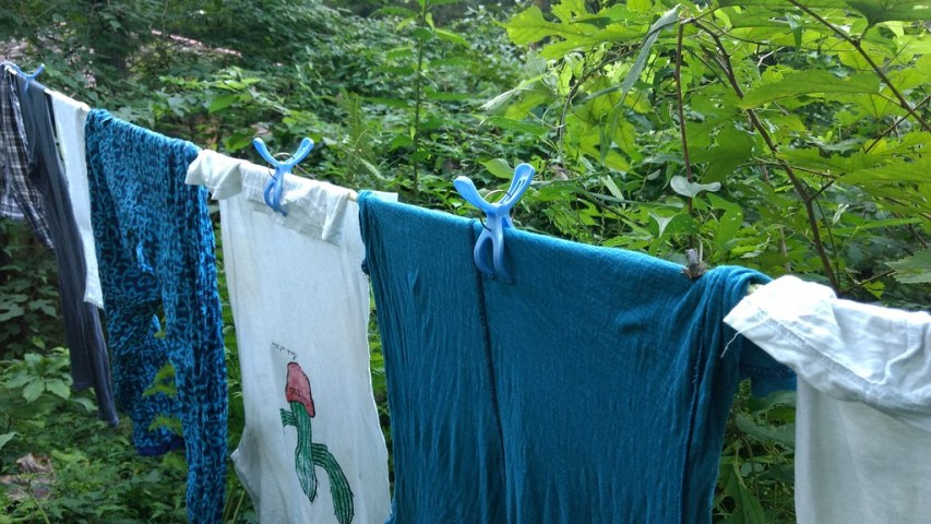 Little frog on the washing