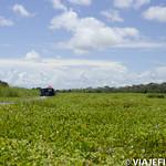 Viajefilos en la Amazonia, Peru 168