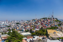 The hills of Guayaquil