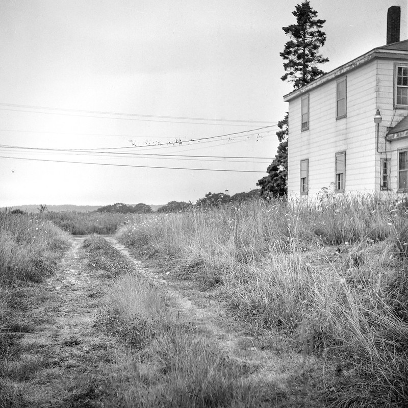 abandoned homestead, dirt driveway, power lines, Route 131, South Thomaston, Maine, Ricohflex Dia M, Arista.Edu 200, early August 2017