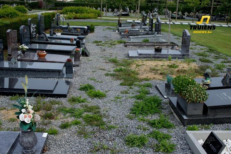kerkhof (3)