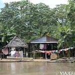 Viajefilos en la Amazonia, Peru 173