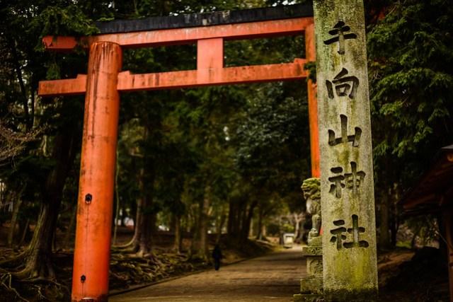 手向山神社の標柱と手向山八幡宮の鳥居 - Enterance to Tamukeyama Hachiman Shrine