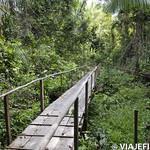 Viajefilos en la Amazonia, Peru 038