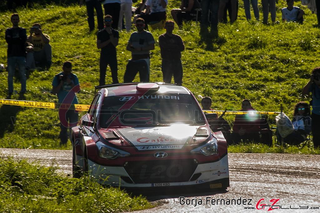 Rally_Cantabria_BorjaFernandez_17_0032