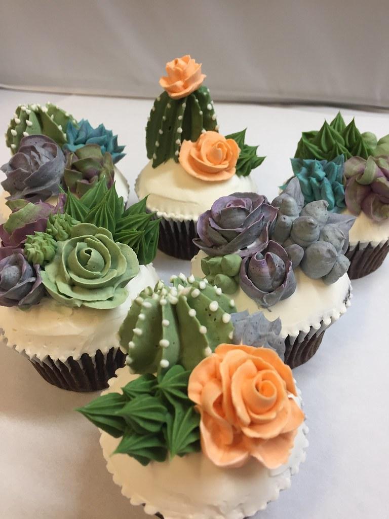Succulent Cactus Cupcakes 8 95 Each Freeport Bakery