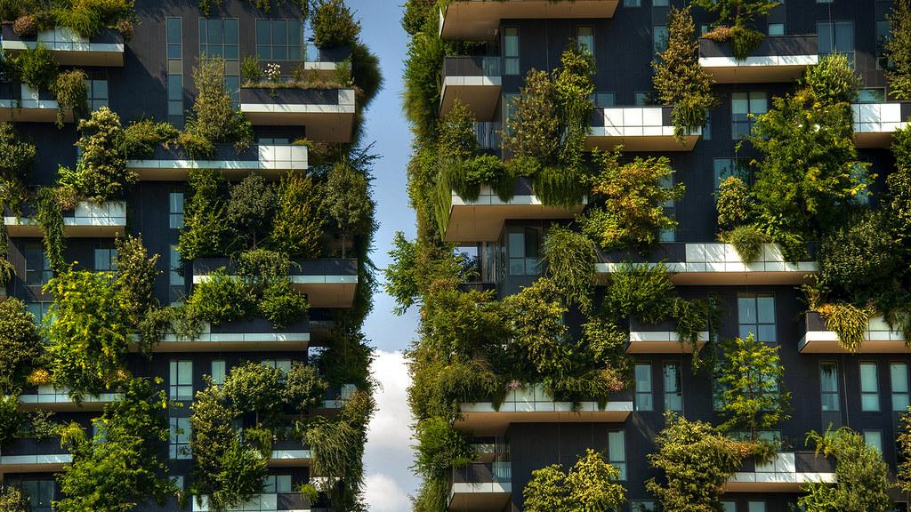 Milan  the vertical forest  Explore   Antonio Rino