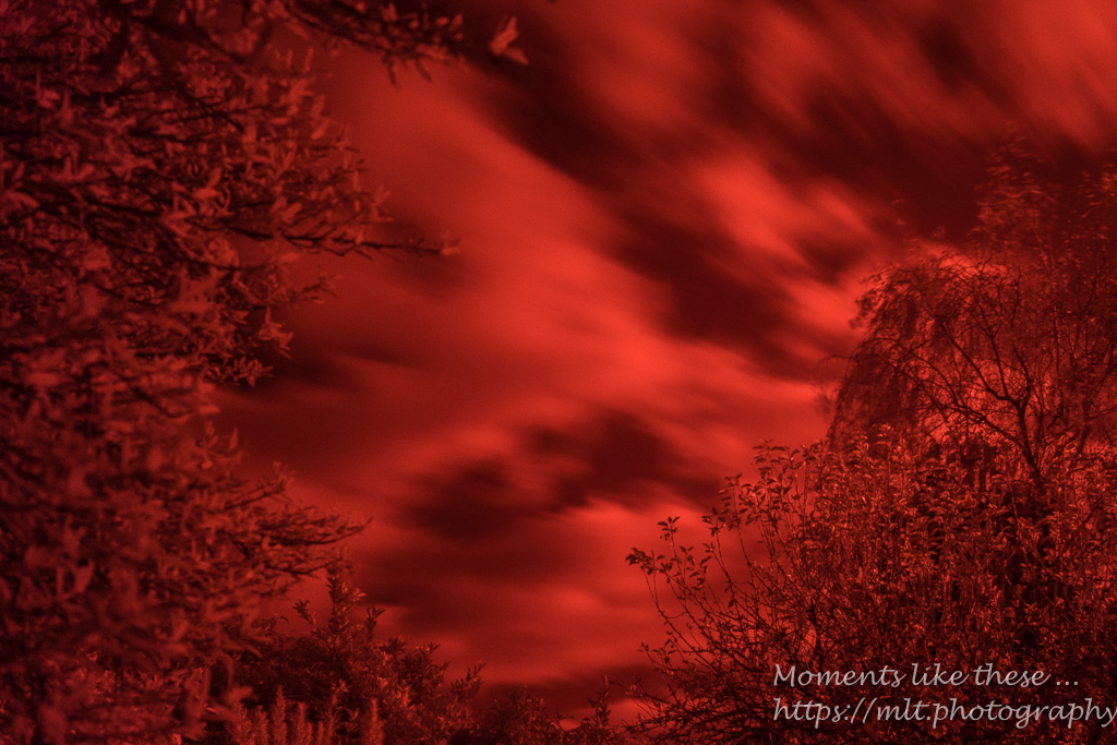 Infra-red images 2017